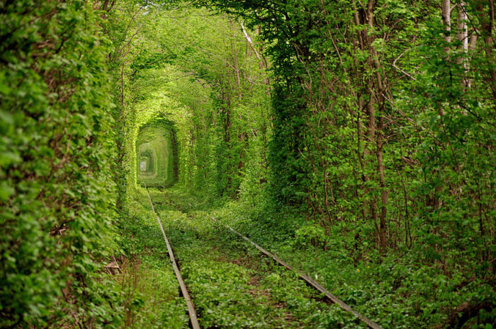 tunel-of-love-ukraine