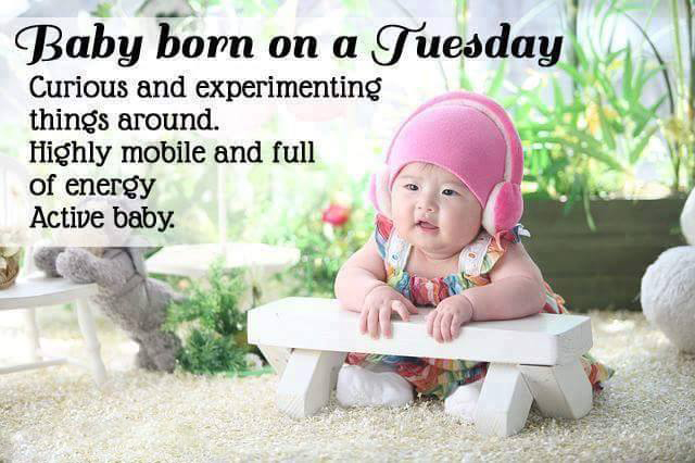 baby-born-tuesday