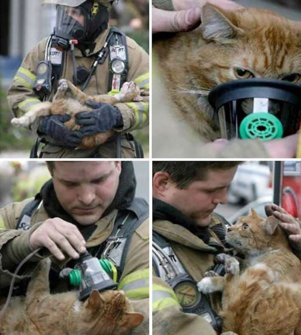 cate-saved-by-firefighter